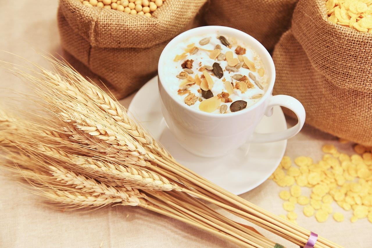 Cereals Cup Muesli Mug Cup Of Muesli Wheat Grains